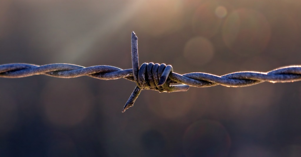Barbed wire, a dangerous barrier
