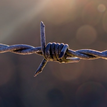 Barbed wire, dangerous barrier